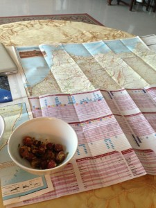 morocco_map9